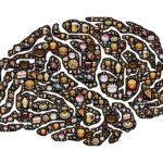 Super Food - Mit Brain Food besser Lernen - Jura Lernplan - Besser Jura Lernen